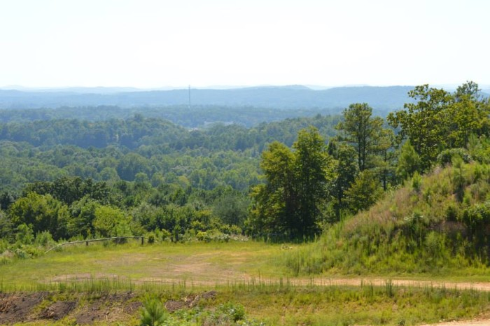 6. Choccolocco State Forest