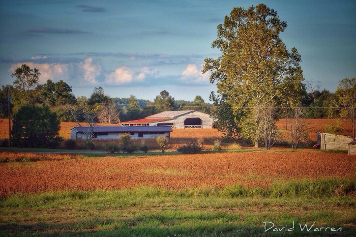 19. This charming barn photo was captured on Hwy 69 in Cullman, Alabama.