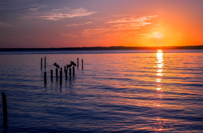13. This tranquil photo was captured at sunrise on the Florida-Alabama line. GORGEOUS!