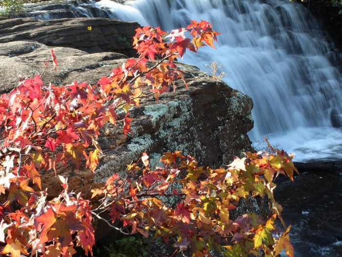 3. This GORGEOUS photo was taken at Little River Canyon National Preserve near Fort Payne, Alabama.