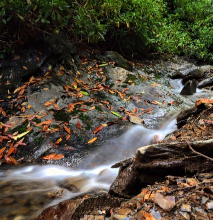 1) Chuck Hagan caught this gorgeous shot over at Alum Creek.
