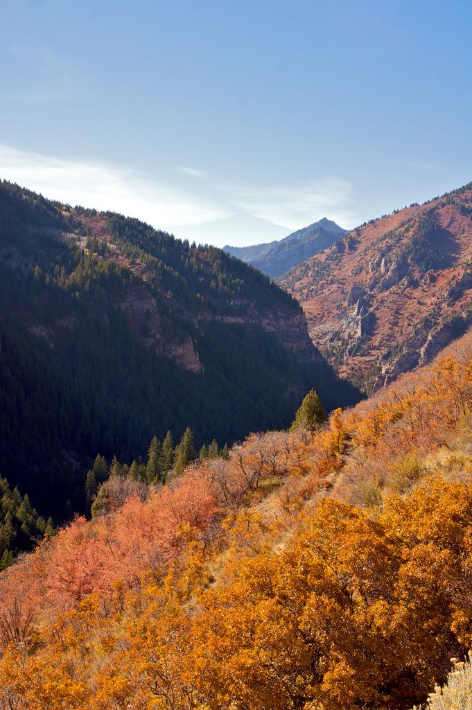 8. American Fork Canyon