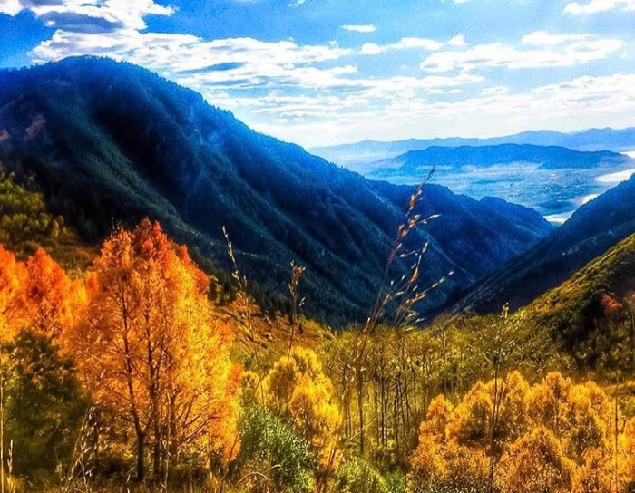 6. Autumn Creer captured these fall colors in Provo Canyon.