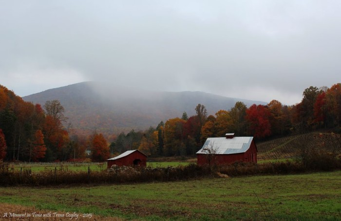 9. Mist covered barns grace the Virginia Creeper Trail outside of Damascus. This moment was captured by Trena Cogley.