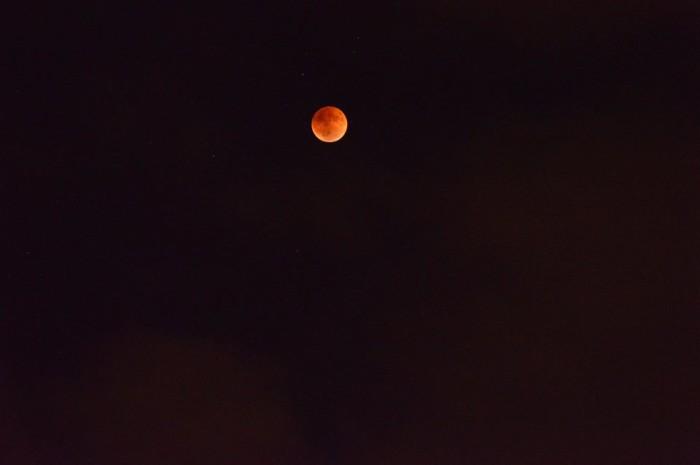 1. Blood Moon near Horse Cave via L. Rainey.