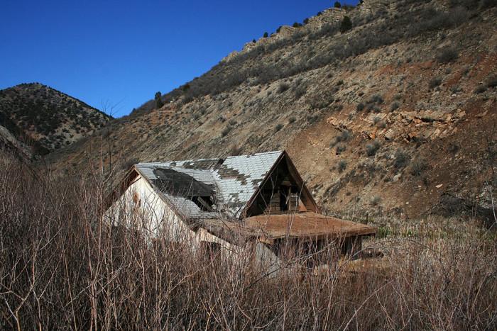 4) Landslide, Thistle