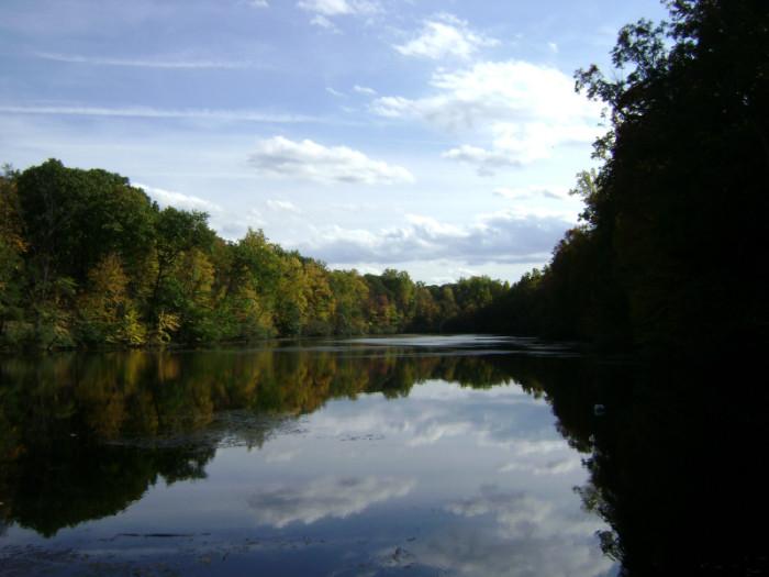6. Old Cedar Trail