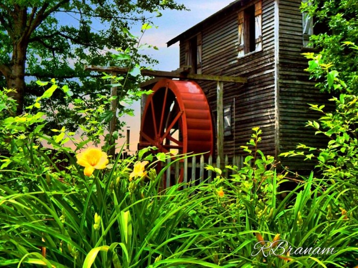 12) Cannonsburgh Village is a great place for weddings, and Ricky Brannan took this perfect picture at the old mill.