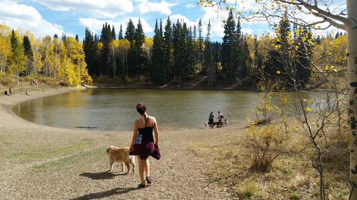23. Cecilia Vermeer shot this photo of happy dogs and their owners at Dog Lake.