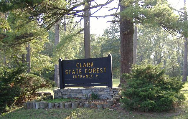 2. Clark State Forest