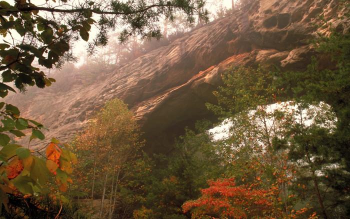 7. Daniel Boone National Forest