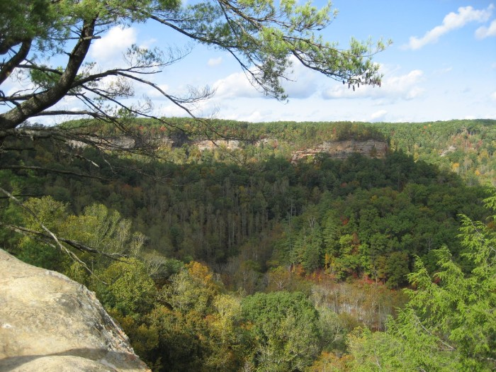 10 incredible natural wonders in kentucky for Daniel boone national forest cabins