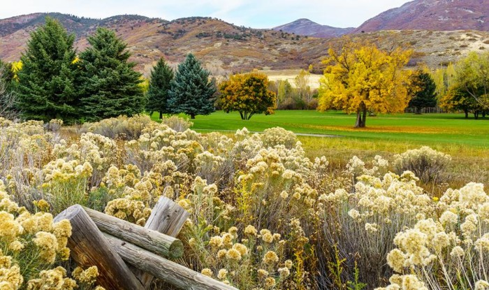 4. Dave Perkins found some fall color last weekend and captured it in this pretty photo.