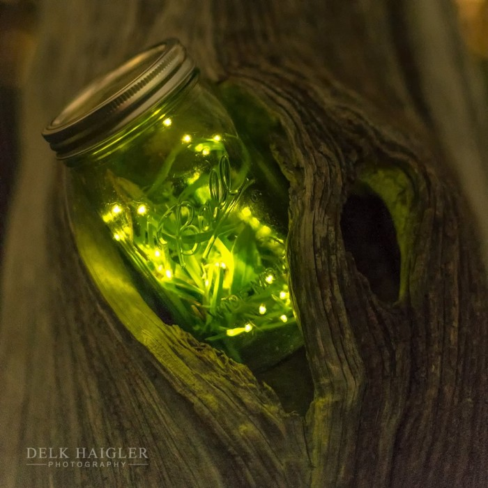 10. There is nothing more southern than fireflies (or do you call them lightning bugs?) These have been caught, briefly by the way, in a jar and photographed by their own light at night.