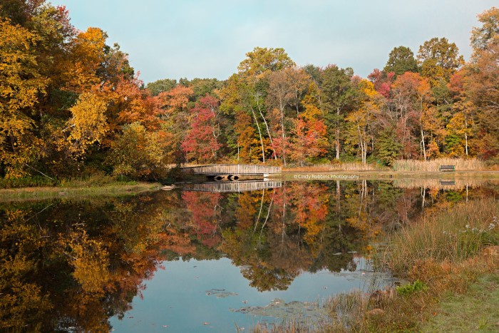 4. Fall is fantastic in Denville, shot by Cindy Robbins.