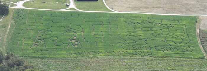 2. Devine's Corn Maze and Pumpkin Patch