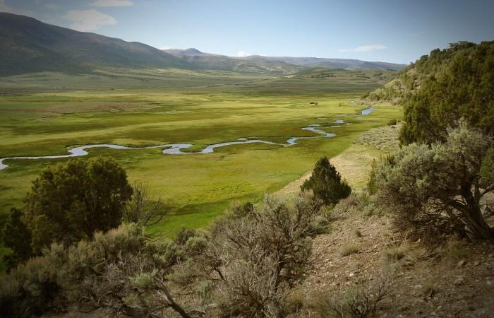 9. Doug Bentley shared this shot taken near Koosharum. Pastoral beauty.