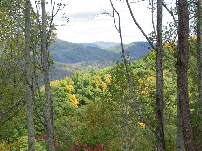 7) We want to know how Carole Johnson got that photographers eye - this is a gorgeous shot of the Great Smoky Mountains!
