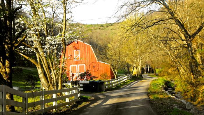 12. Eastern Kentucky via Joanna Burchett.
