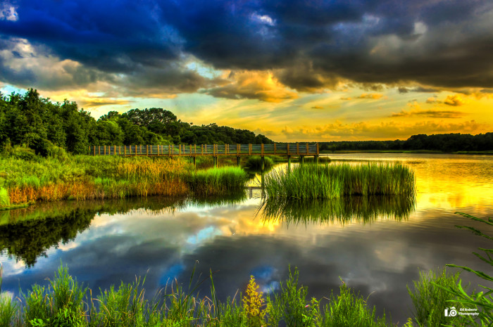 1. Ed Roberts has created a show stopper of what South Carolina landscapes look like.