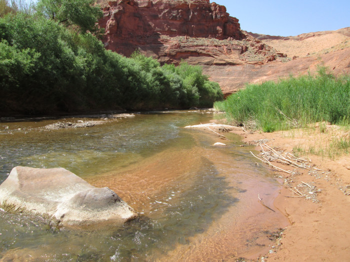 3. The Escalante River