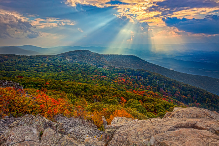 5. We hunt down the most amazing fall foliage. Fortunately, it's not hard to find.