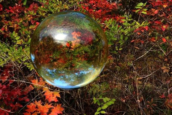 11. I see fantastic fall foliage in this crystal ball, shot by Neil Anderson.