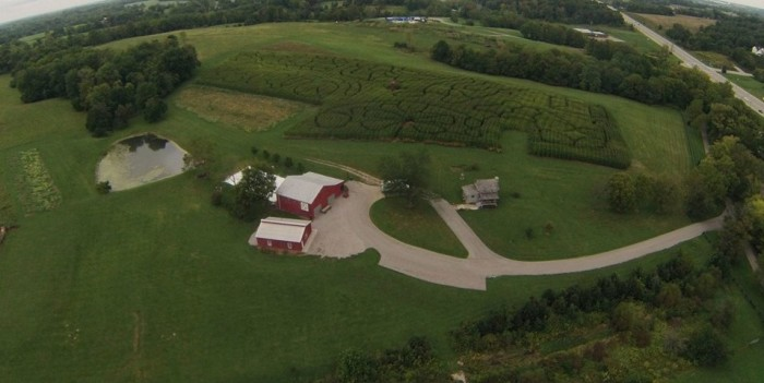 5. Farm Haven Corn Maze