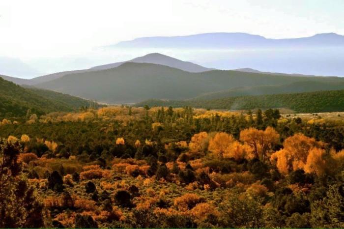12. Georgi Harris Dalton shared this amazing landscape taken west of Junction, looking toward Circleville.