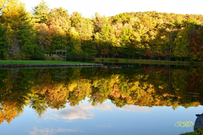 7. This mirror image at Glen Alton Farm north of Pembroke is absolutely breathtaking. Submitted by Trish Downs.
