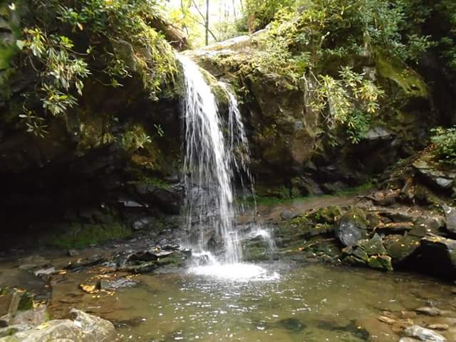 9) Grotto Falls is looking pretty stunning through the lens of Margie Alexander's camera.