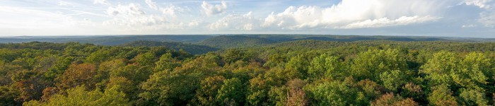 7. Harrison–Crawford State Forest
