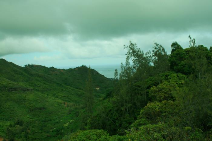 4) Hau'ula Forest Reserve, Oahu
