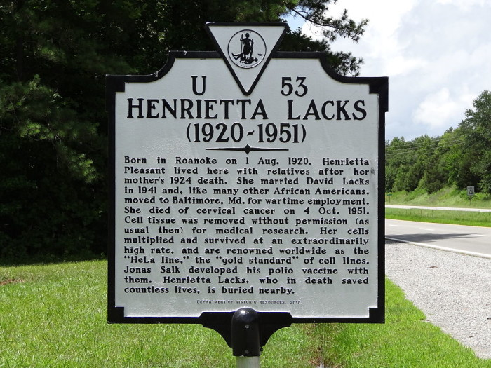 11. We changed the world of medical research through Henrietta Lacks ' contribution.