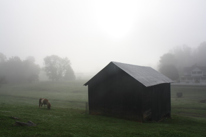 10. Early morning fog creates a surreal setting for this scene in Glade Springs. Submitted by Brenda Lindsey.