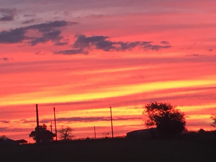 1) A gorgeous sunrise captured by Pam Cinadr in Shiner, Texas!