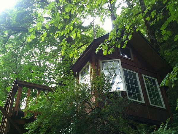 7) A tiny cabin in the woods.