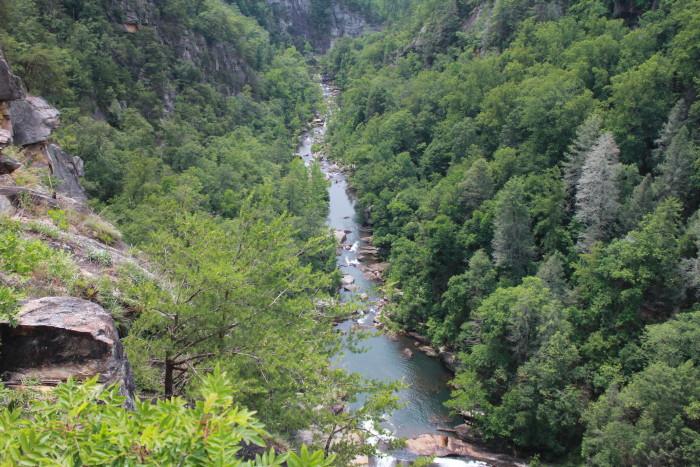 15. View down Tallulah Gorge by Scott Morris