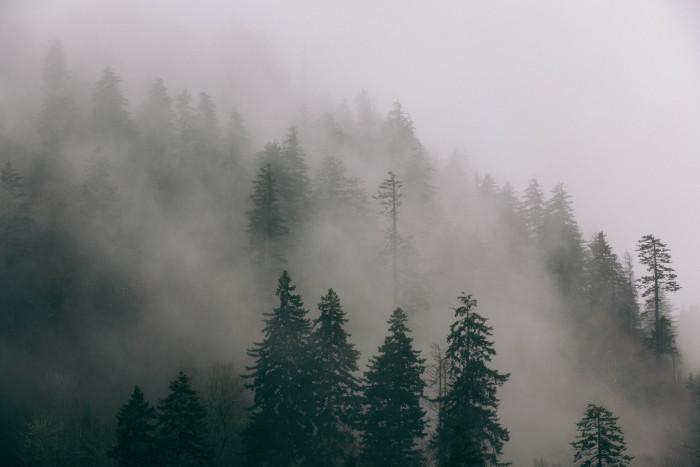 2. Kentucky Mountain