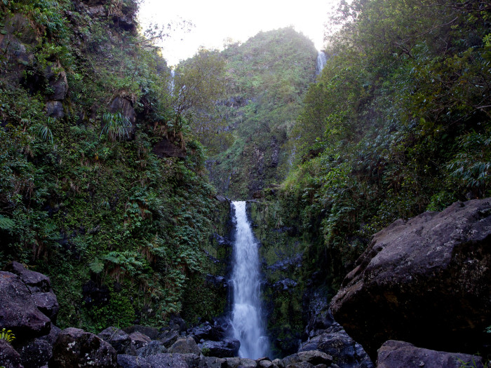 3) Koolau Forest Reserve, Maui