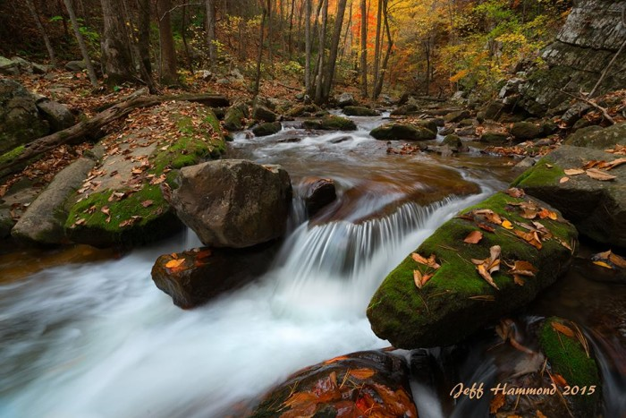 1. Water cascades down a local stream near Roanoke. This perfect fall scene was captured by Jeff Hammond of Landscapes of the Blue Ridge.