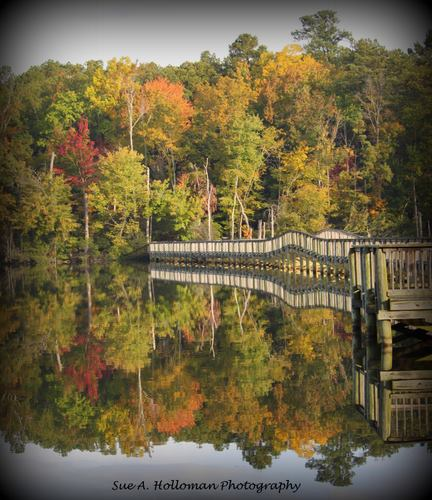 6. The Long Bridge in Newport News provides the ideal place to see the fall foliage. Thanks to Sue Ann Lassiter Halloman for capturing this scene.