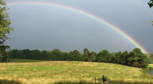 Amazing! These 11 Rainbows Captured In Mississippi Will Leave You Speechless