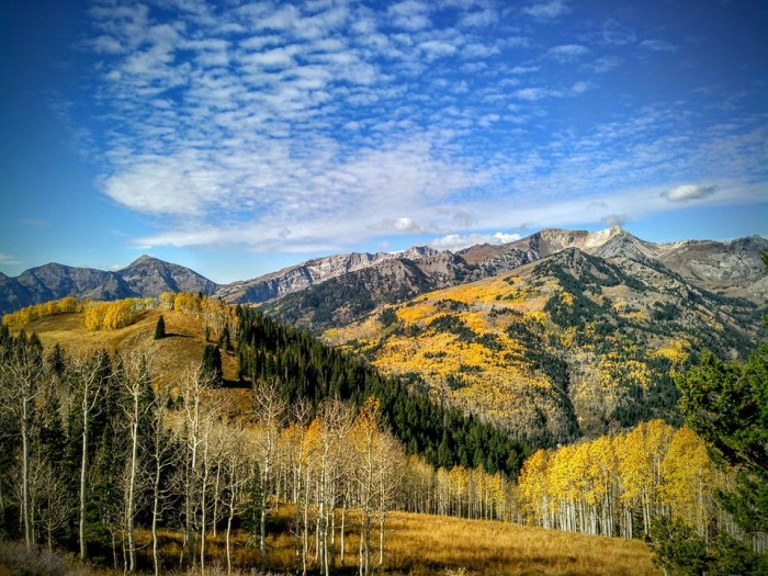 5. Mallori Jacobsen's photo was taken at the top of Snake Creek, overlooking Mineral Basin.