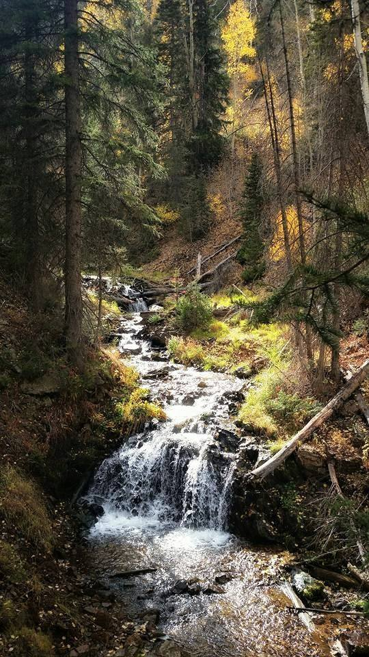 9. Michelle Vance Pilling sent in this photo of Beaver Canyon.