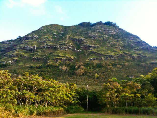 11) Mokuleia Forest Reserve, Oahu