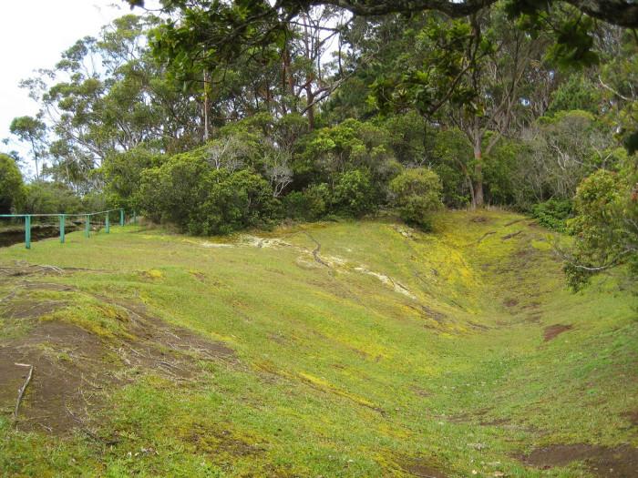 8) Molokai Forest Reserve, Molokai