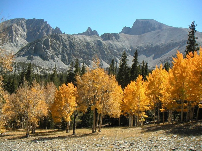 1. Great Basin National Park - White Pine County, NV
