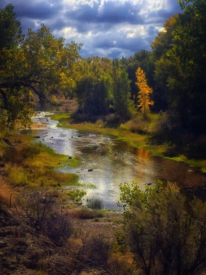 17. A gorgeous view of the Carson River in Carson City, Nevada.