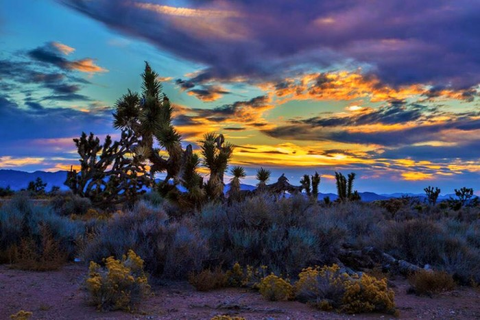 1. This marvelous photo was captured while driving along Highway 93, south of Caliente, Nevada.